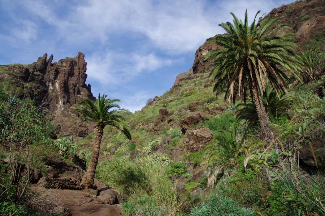 les gorges de Masca - Tenerife