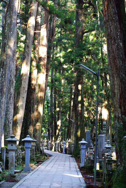 allée du cimetière Okuno-in - Koya-san