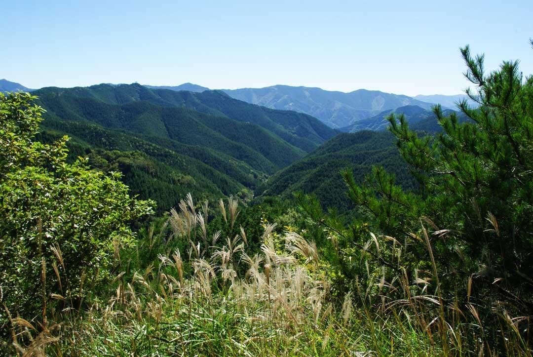 panorama des montagnes de la péninsule de Kii autour de Koya-San