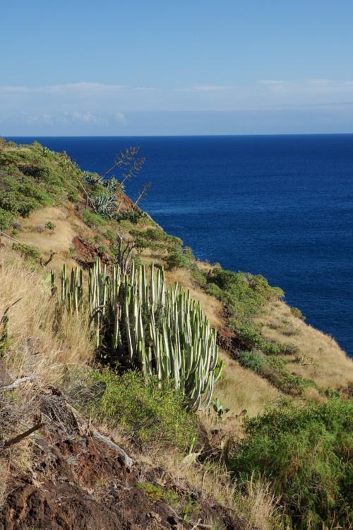 Paysage de la côte sud de l'Anaga - Tenerife