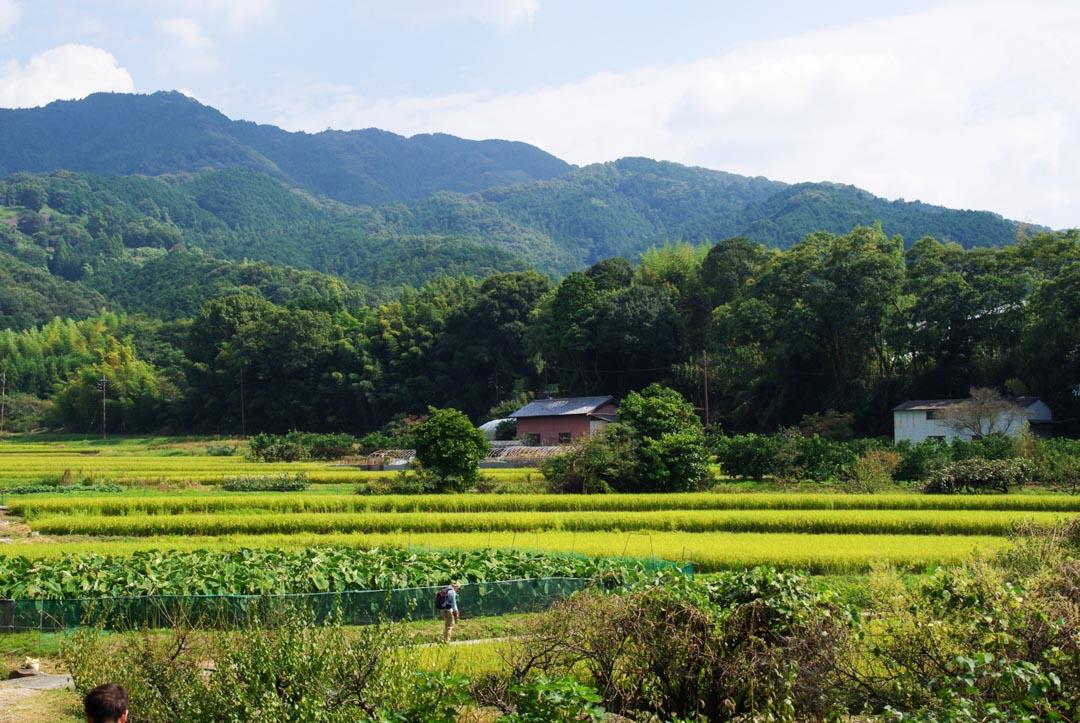 Les rizières et la montagne du Kansai autour de Nara