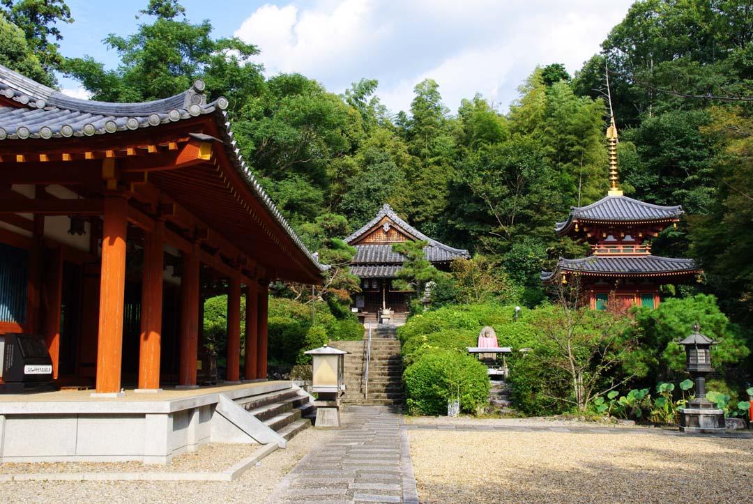 temple byodo-ji - Sakurai - Japon