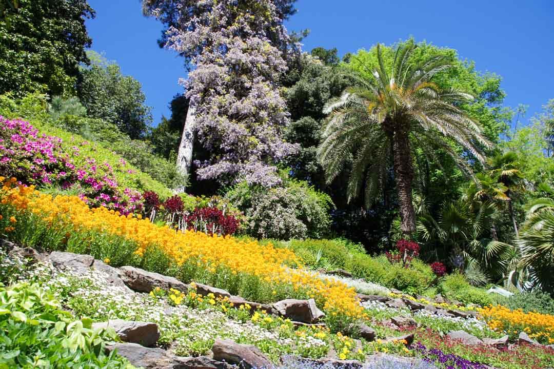 le jardin de la villa Carlotta en fleurs