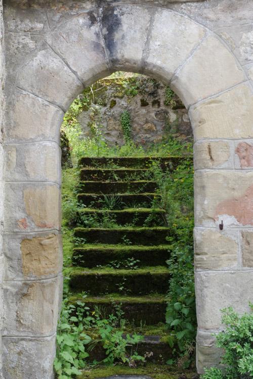 un escalier couvert de mousse - Soulier - Corrèze