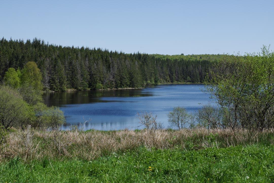 étang des Oussines - Corrèze