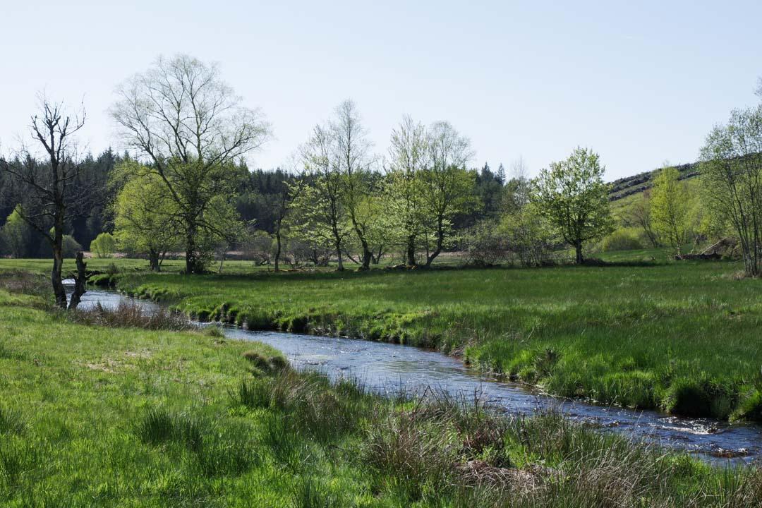 Plateau de Millevaches - Corrèze