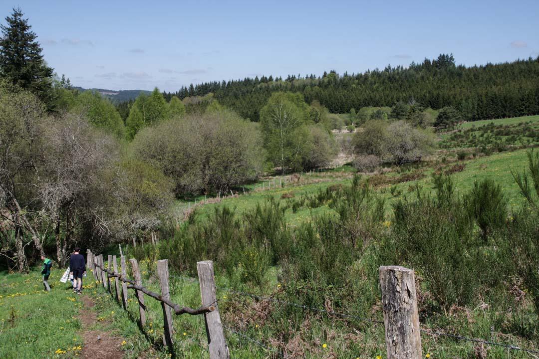 paysage du plateau de Millevaches