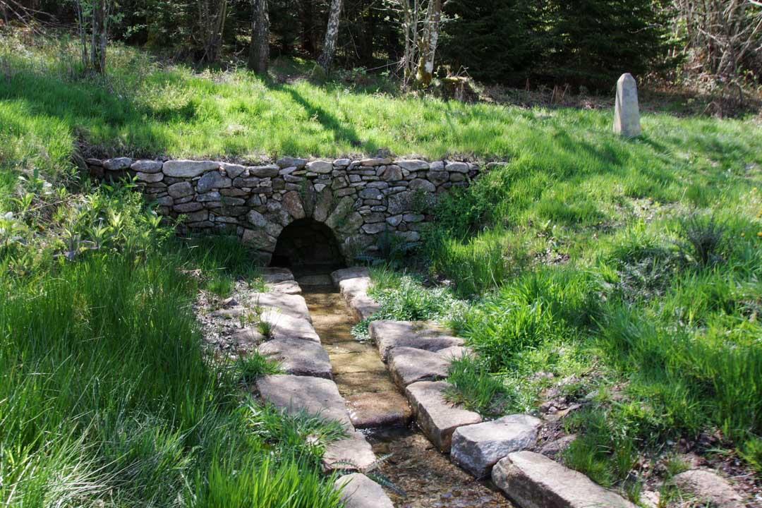 Source de la Vienne - Plateau de Millevaches