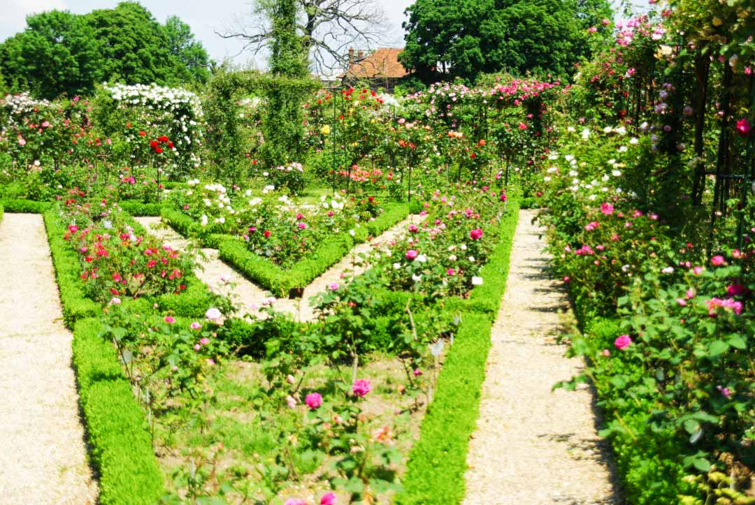 les allées de la Roseraie de l'Hay les Roses