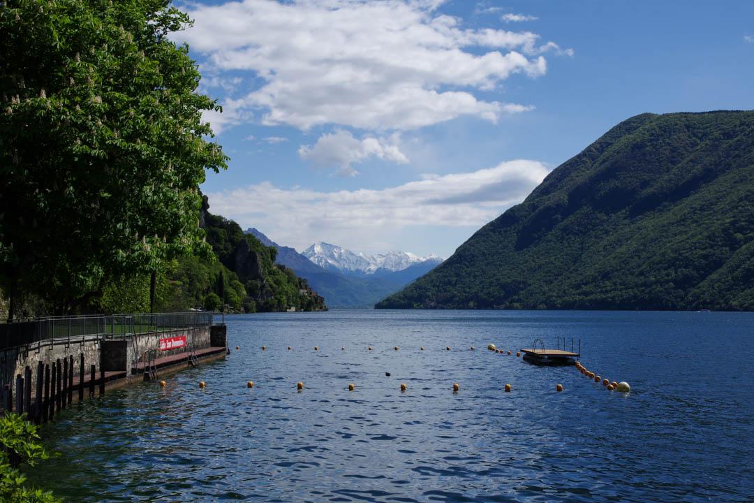 Le Long du sentier de l'Olivier au bord du lac de Lugano