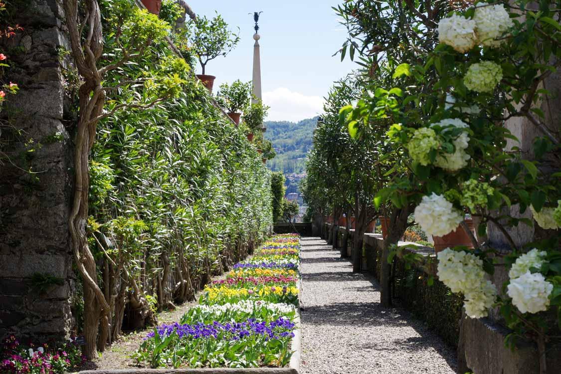 Une allée tranquille dans les jardins d'Isola Bella