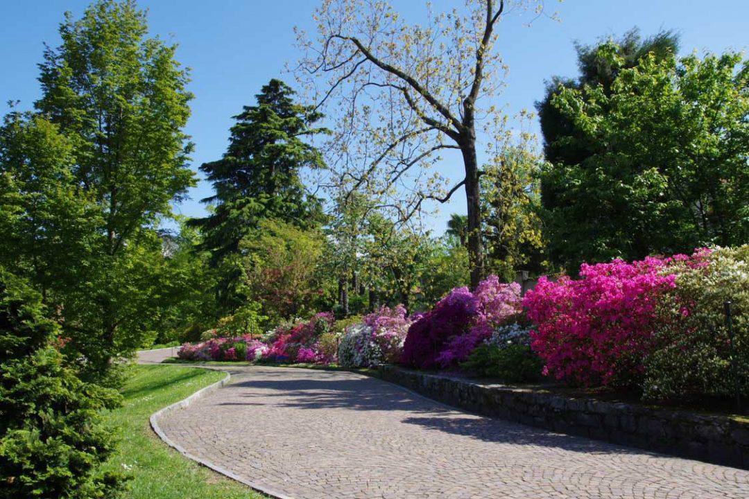 Les allées fleuries d'azalées dans le jardin botanique de la villa Taranto