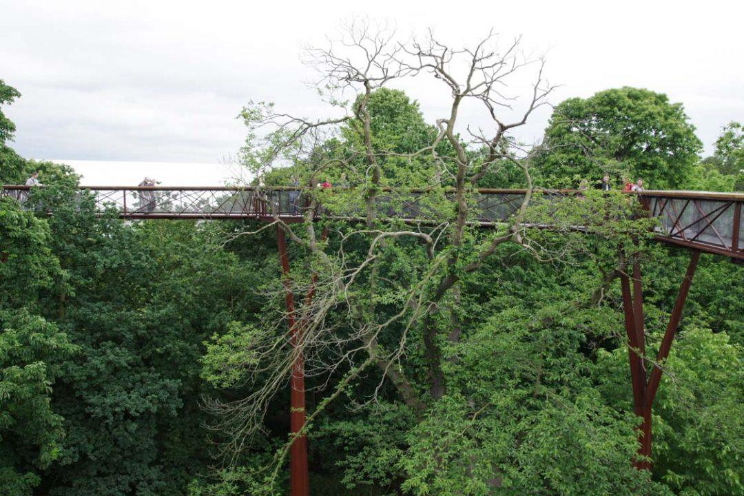 le pont suspendu de Kew Garden