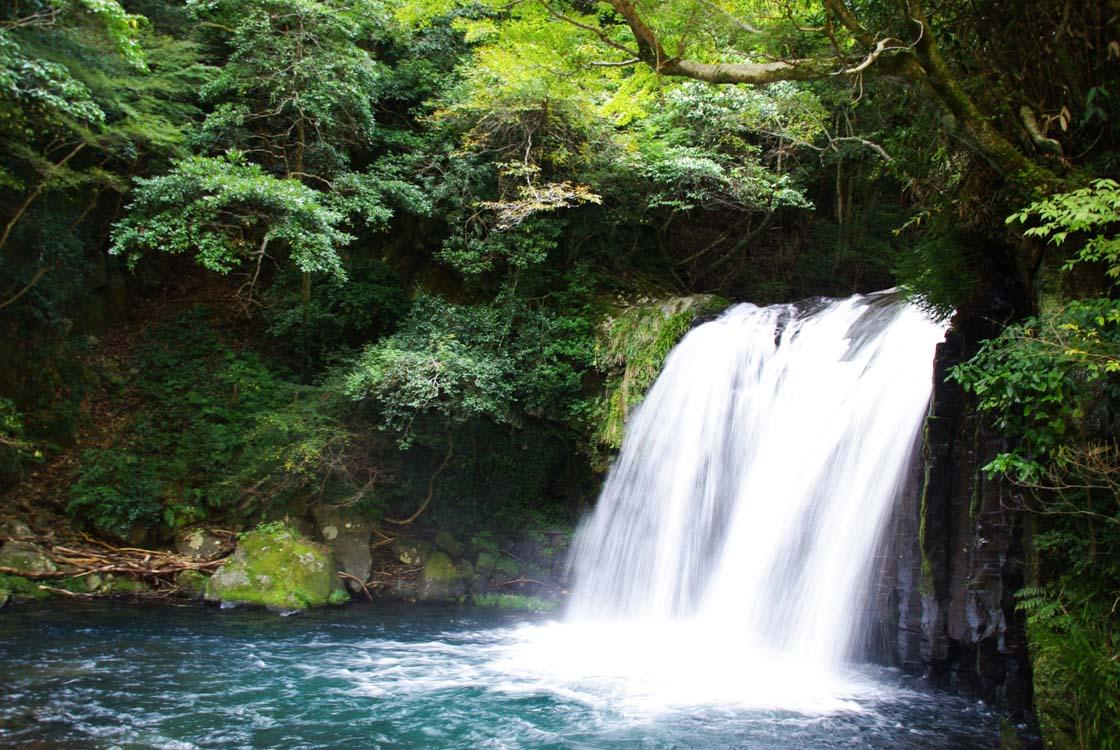 Visiter la Péninsule d'Izu : une excursion à 1 heure de Tokyo