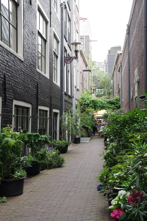 Ruelles dans le centre historique d'Amsterdam