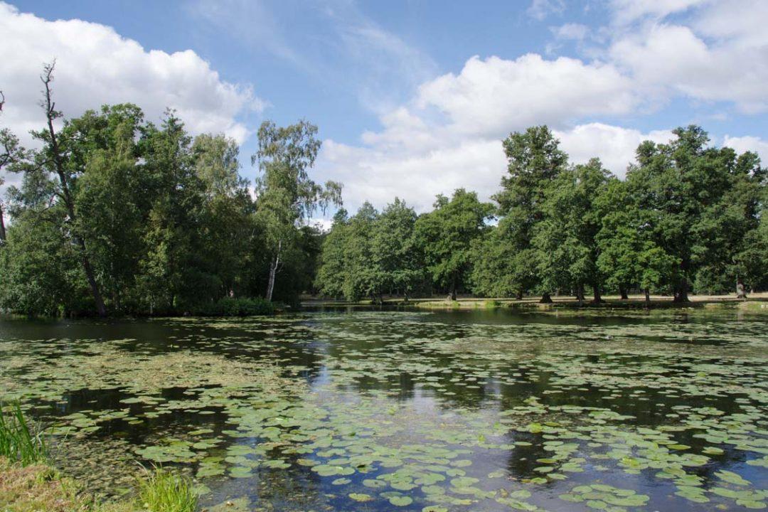 Jardin à l'anglaise du parc du domaine royal de Drottningholm