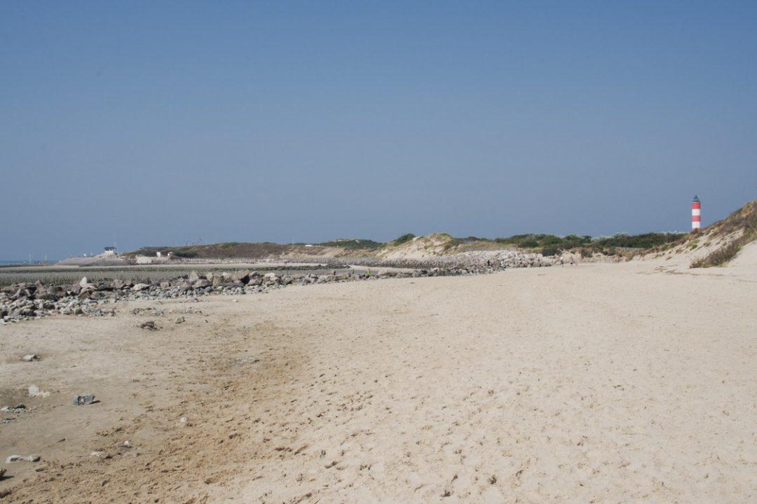plage de la baie d'Authie