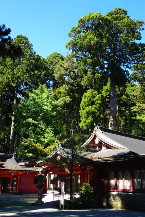 le sanctuaire d'Hakone