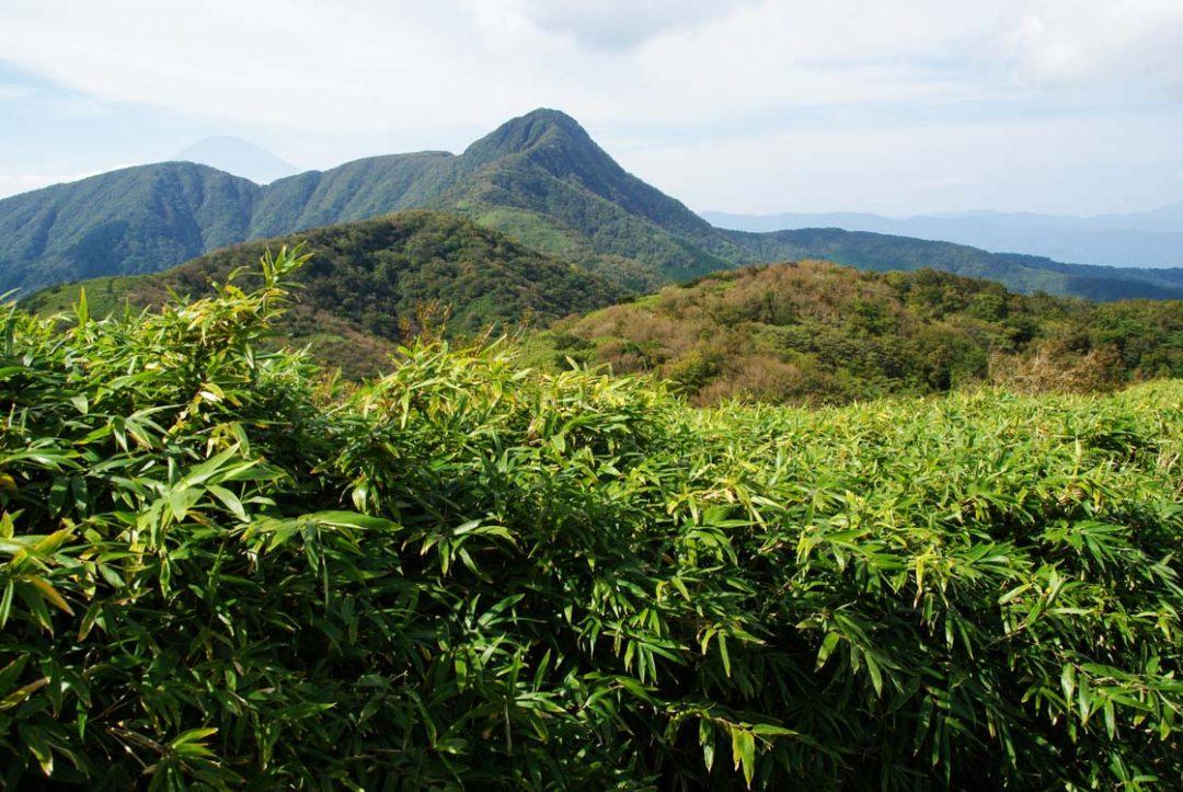le Mont Kintoki - Hakone