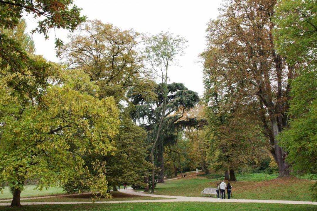 parc de la maison de chateaubriand