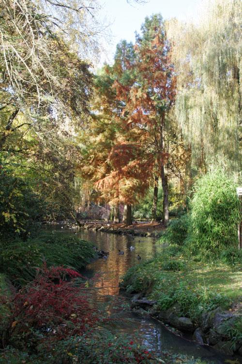 l'automne à Beauval