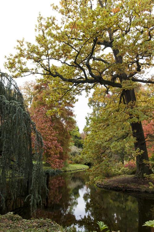 L'automne à l'Arboretum de la Vallée aux Loups - Chatenay-Malabry