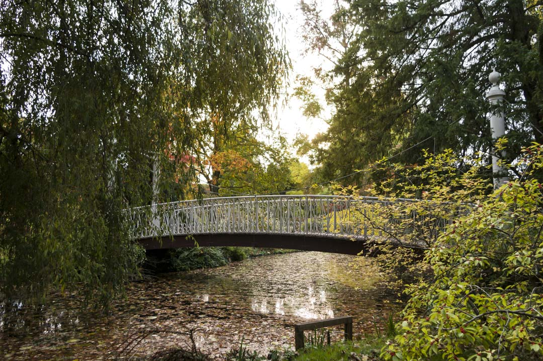 L'Arboretum de la Vallée aux Loups - Chatenay-Malabry