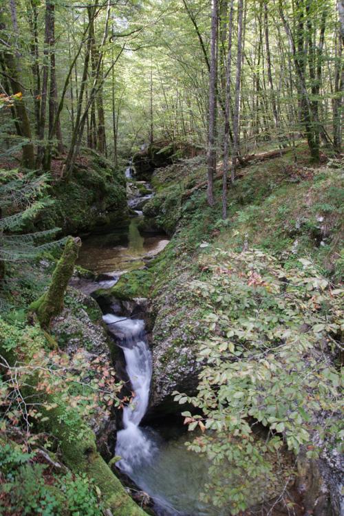 Gorges de la mostnica - Slovenie