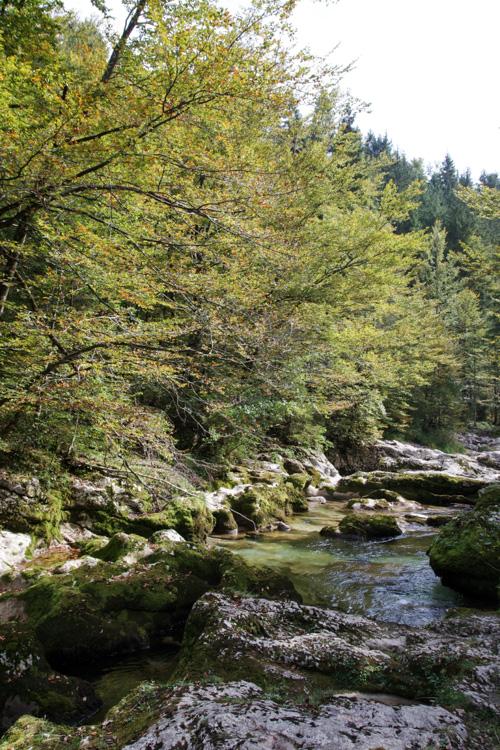 Vallée de la Mostnica - Triglav - Slovénie