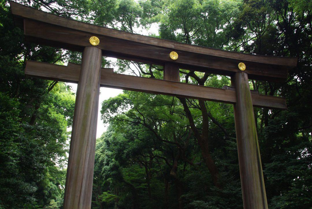 Entrée du sanctuaire Meiji Jingu - Tokyo