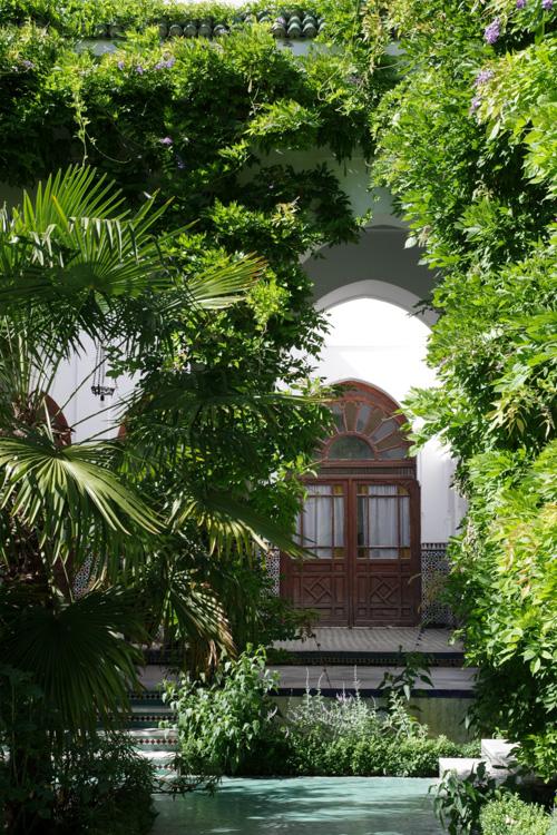 Une bouff e d 39 exotisme dans les jardins de la mosqu e de for Jardin hispano mauresque