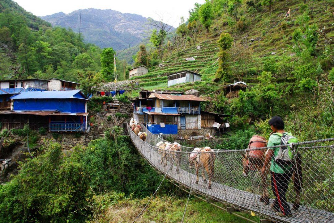 Arrivée sur le village de Tikhedhunga - Népal
