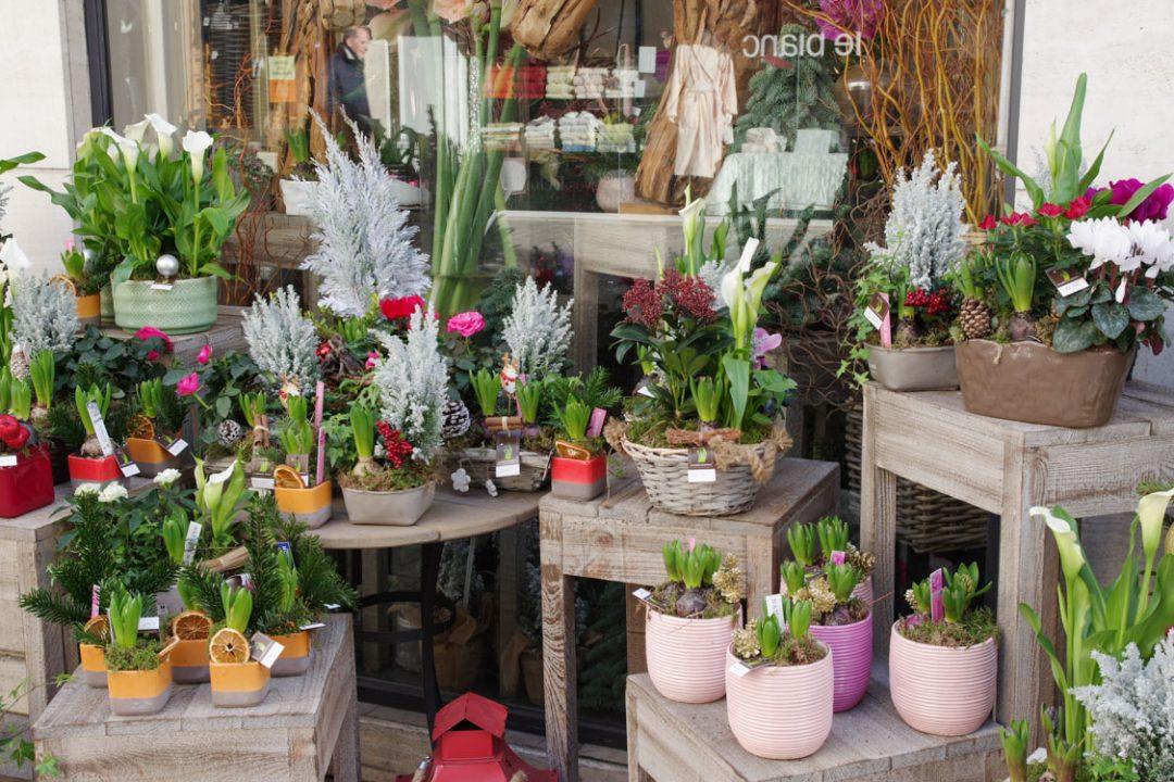 Fleuriste de la rue Houdan