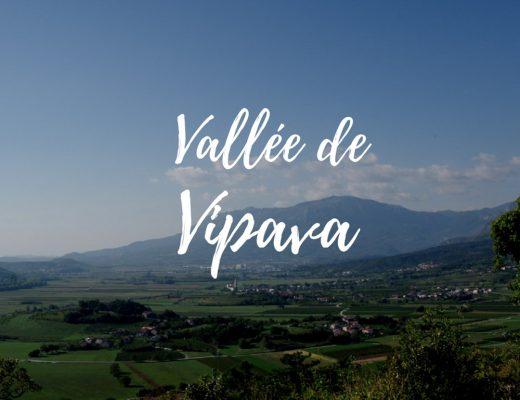 Vallée de Vipava : route de vins en Slovénie