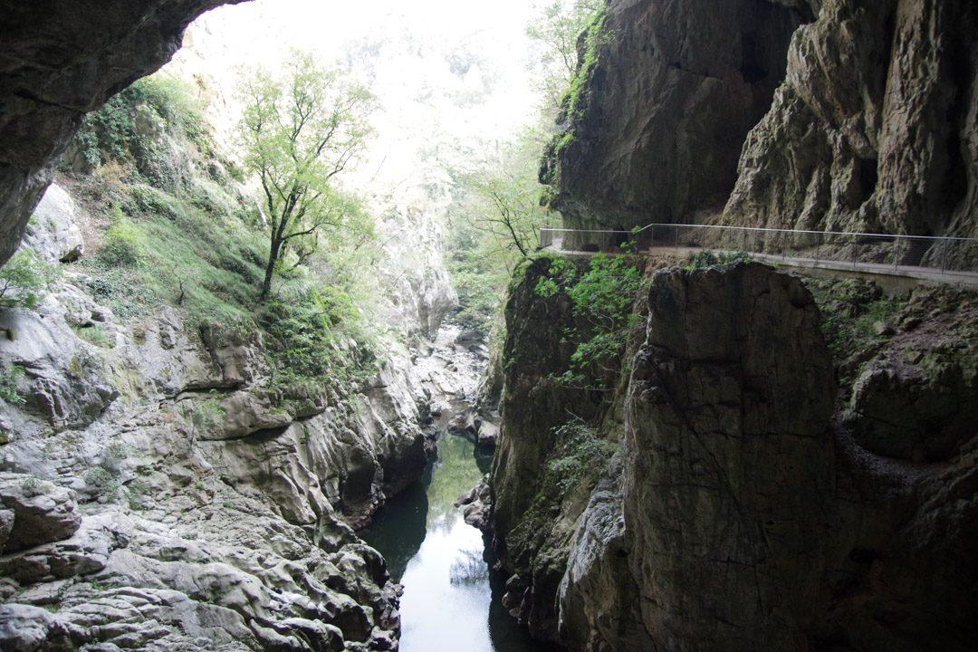 Balade le long de la rivière Reka - Parc des grottes de Skocjan - Slovénie