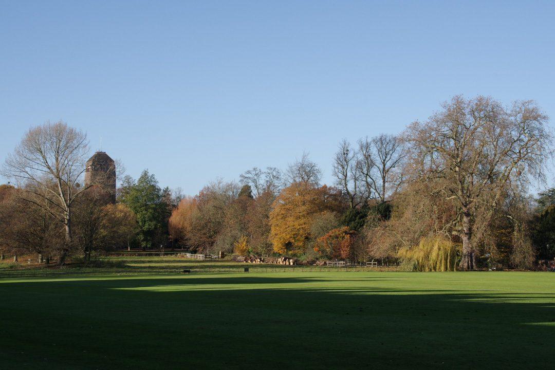 les espaces vert de Cambridge