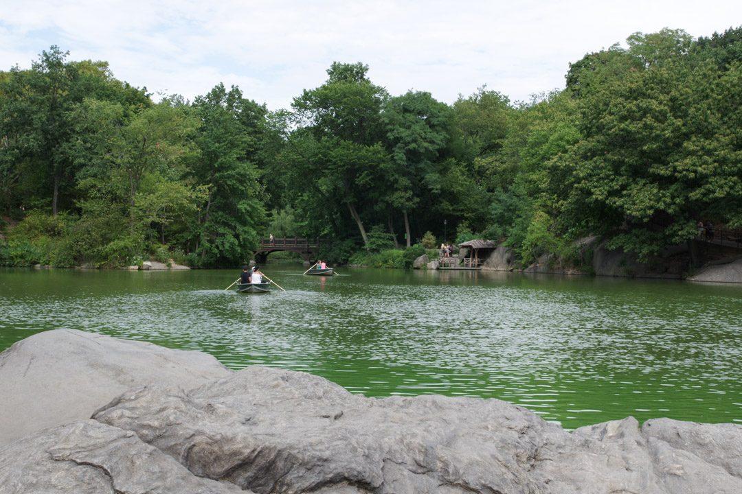 Le lac de Central Park - New York