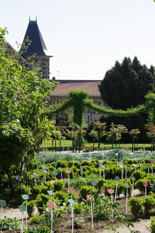 Jardin botanique du Parc Thabor à Rennes