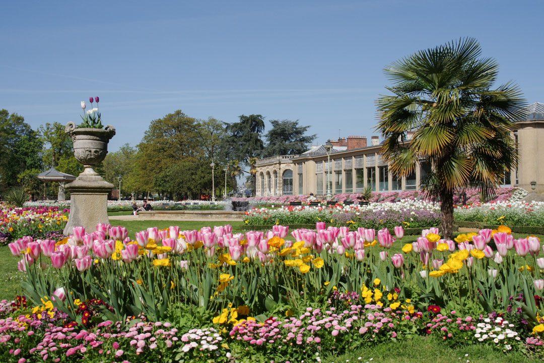 Orangerie et parterre de Tulipes - Parc Tharbor - Rennes