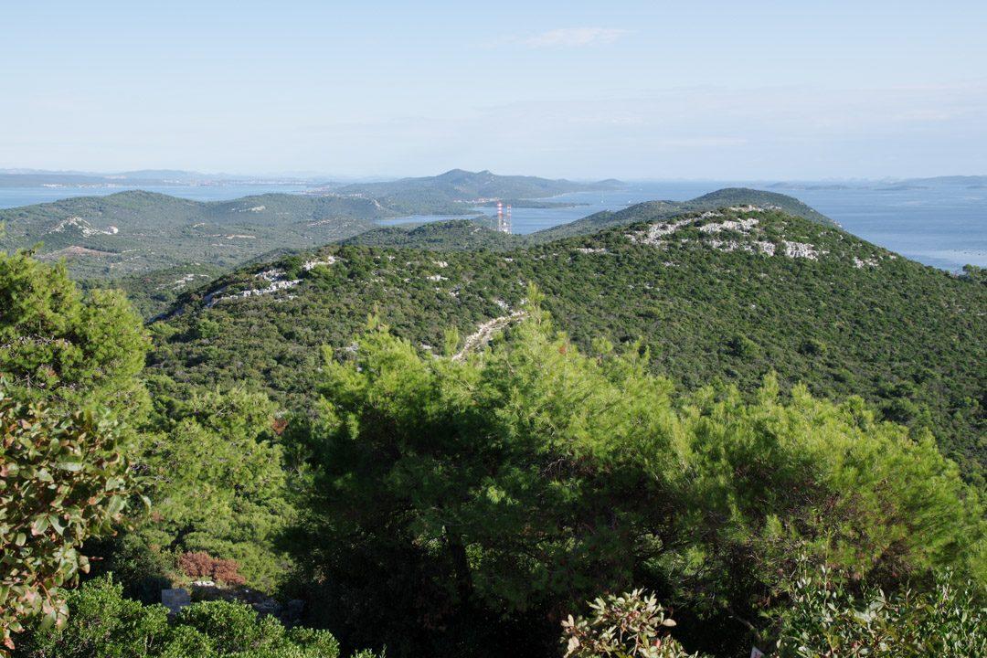 Panorama sur l'ile d'Uglan - Croatie