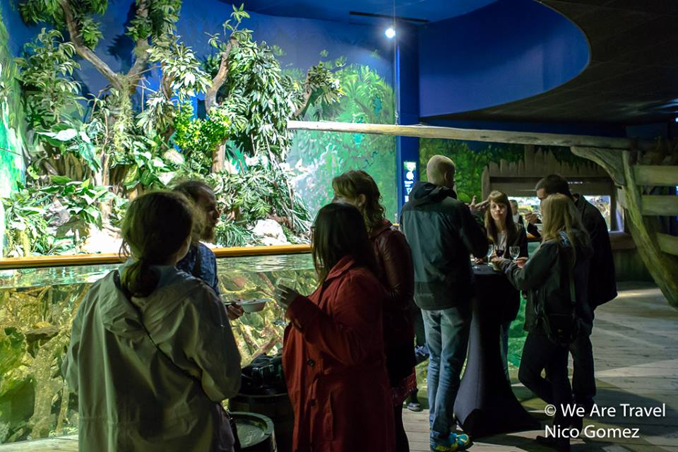 Soirée We Arte Travel à l'aquarium de Saint Malo