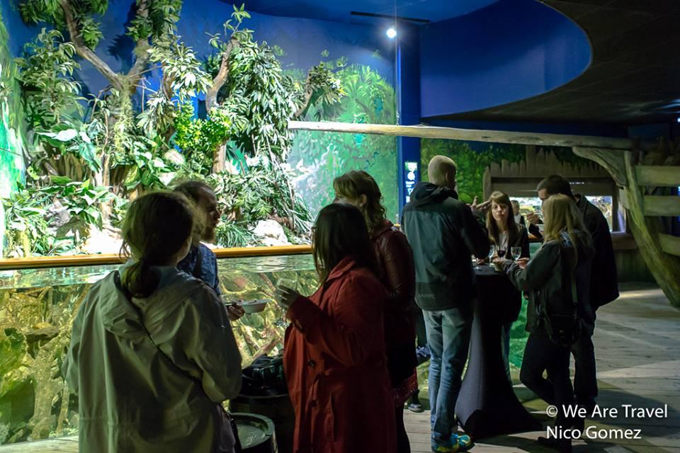 Soirée We Arte Travel à l'aquarium de Saint Malo