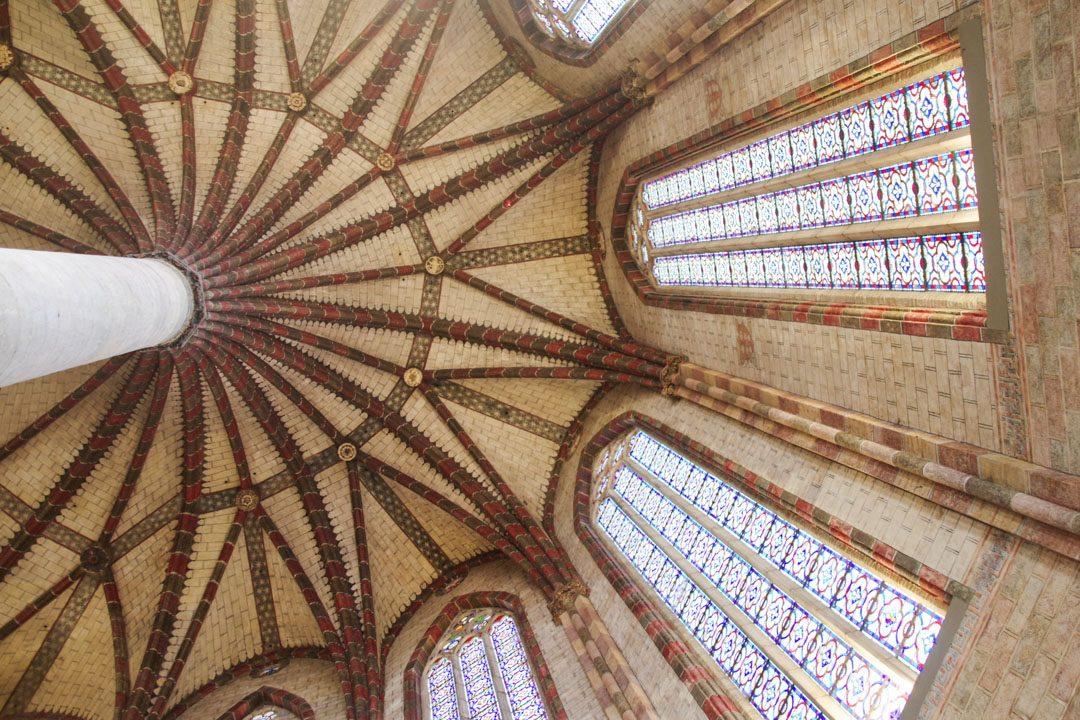 le palmier du couvent des Jacobins - Toulouse