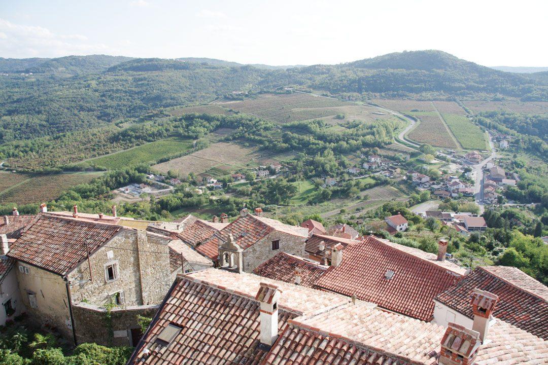 panorama sur les environs de Motovun