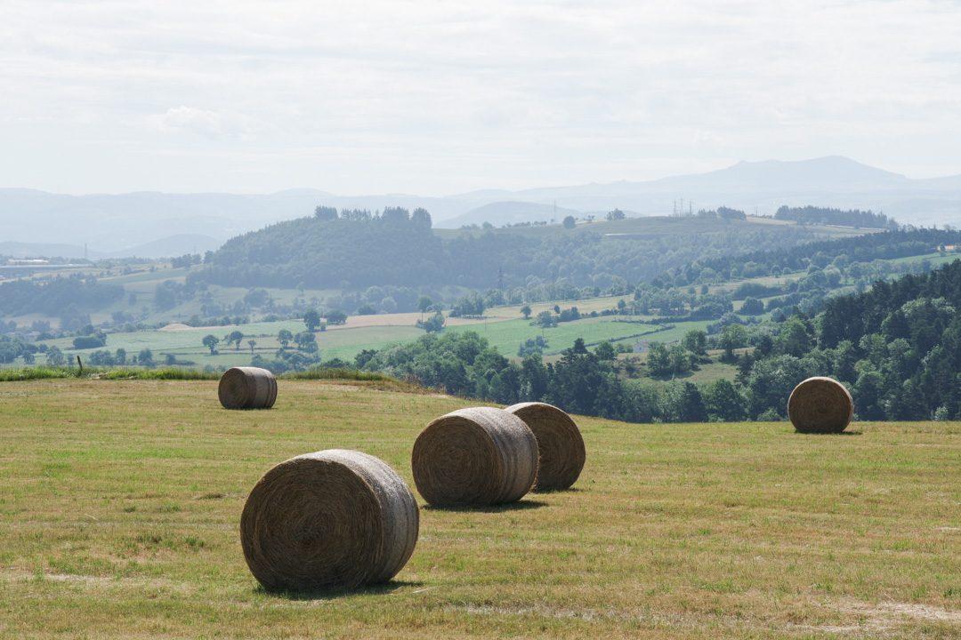 Paysage de campagne en Haute Loire