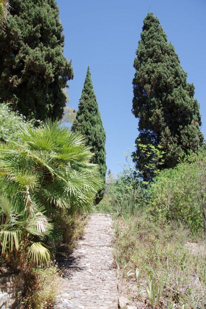 Allée du jardin Castel Sainte Claire à Hyeres