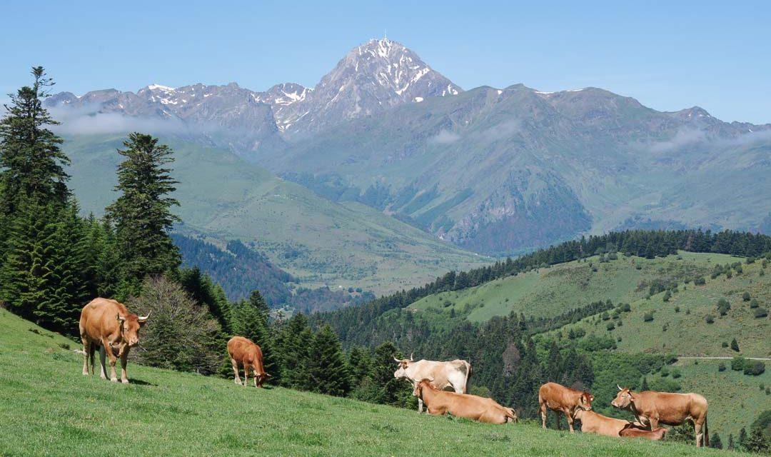 Itinéraire d'une semaine dans les Hautes Pyrénées