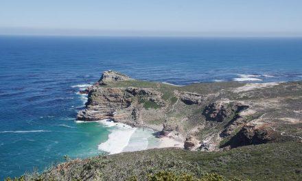 Visiter la péninsule du Cap en une journée