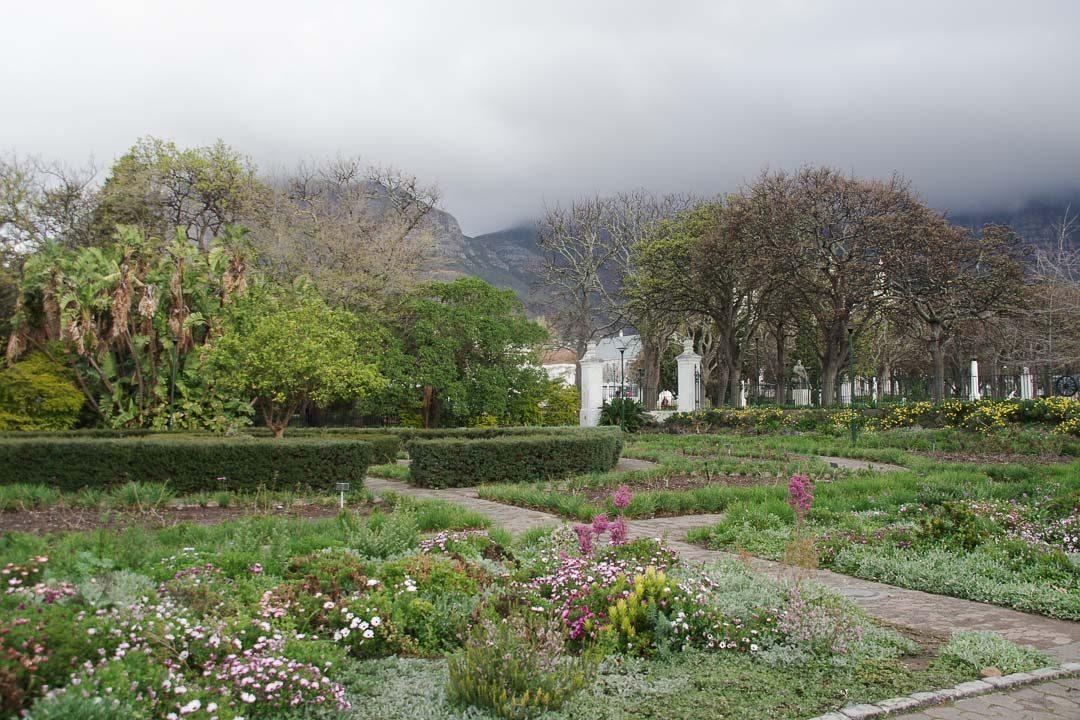 Jardin botanique de Company's Garden