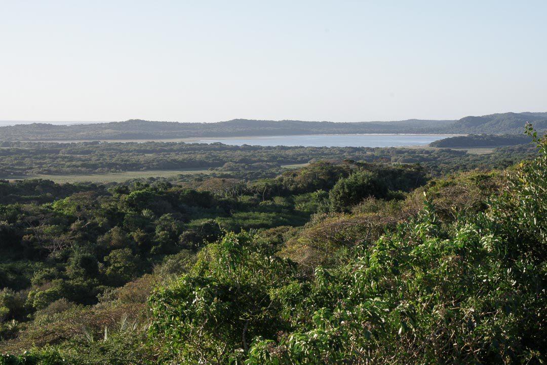Panorama sur iSigmangaliso Wetland Park